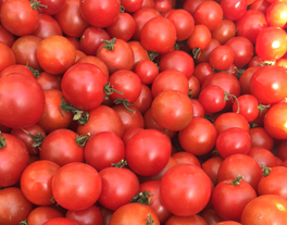Many tomatoes in pile