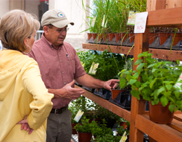 A man and woman look at plants on a shelf