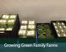 Growing-Green-Family-Farms
